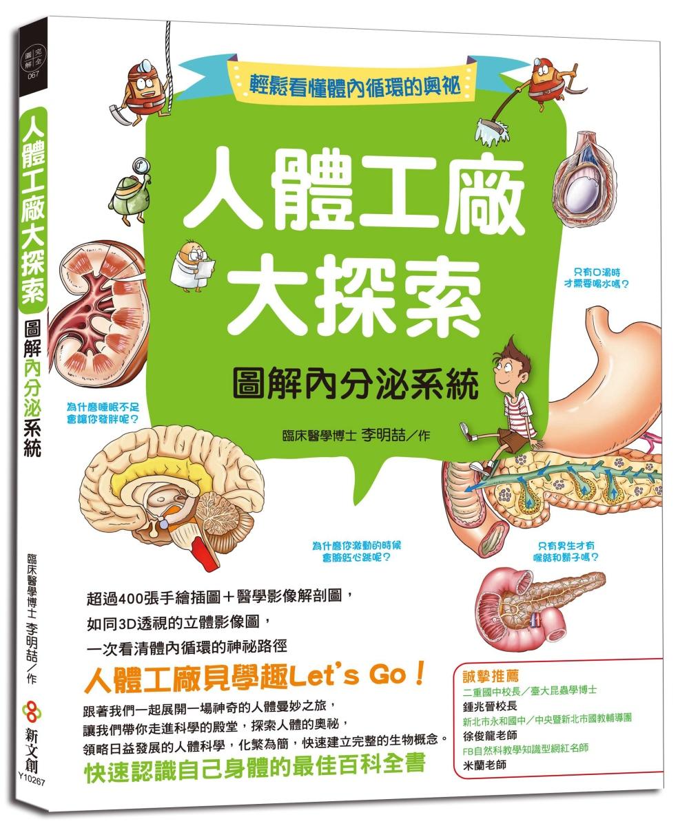 人體工廠大探索:圖解內分泌系統
