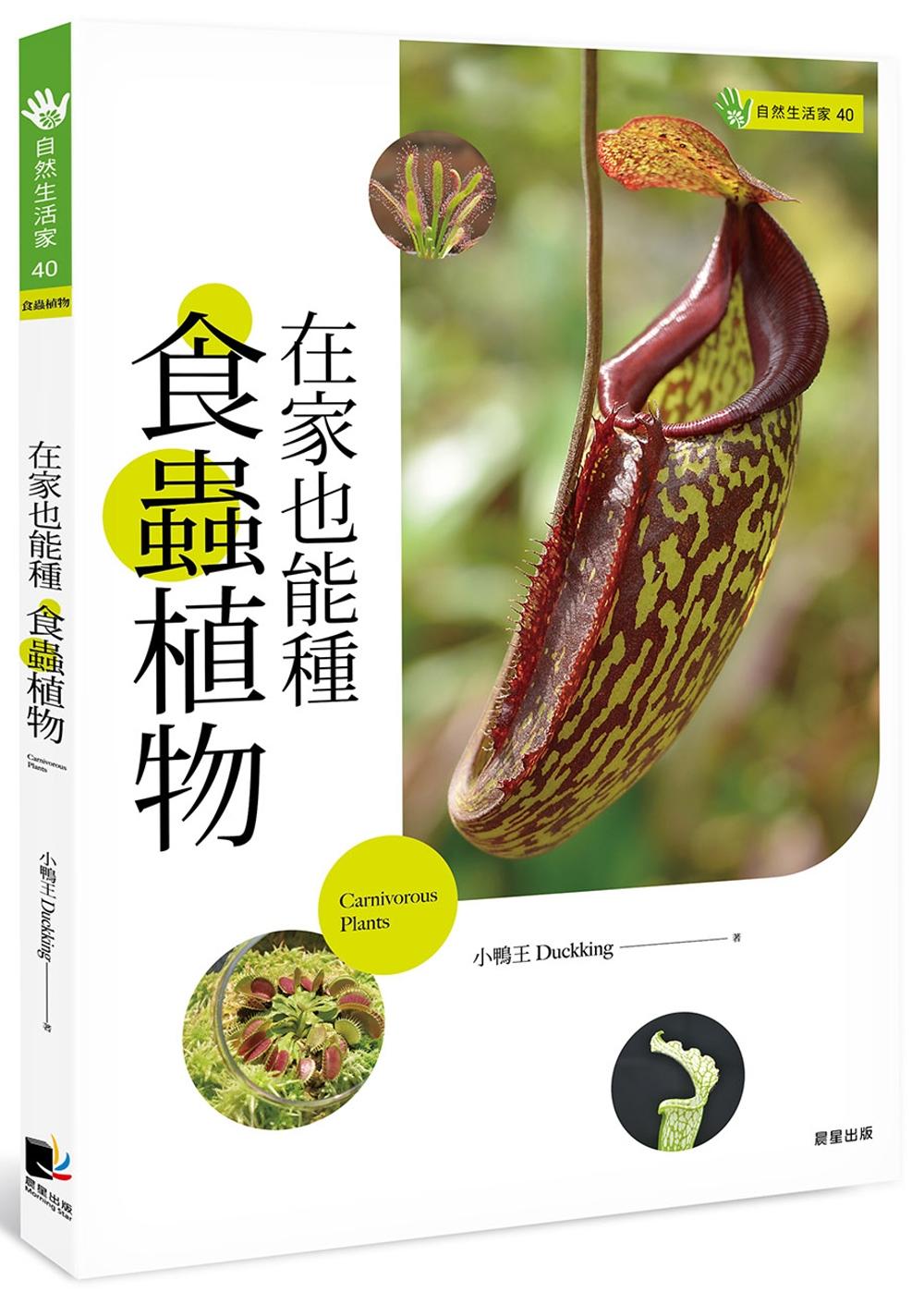 在家也能種食蟲植物
