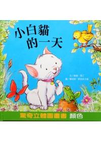 小白貓的一天