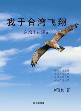 我於臺灣飛翔:臺灣周行漫記(簡體中文)