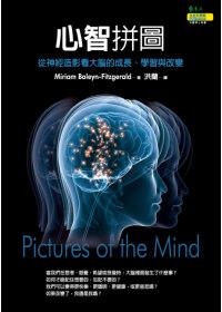 心智拼圖:從神經造影看大腦的成長、學習與改變