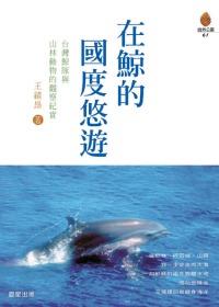 在鯨的國度悠遊