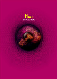 Flash 眩目(附光碟)