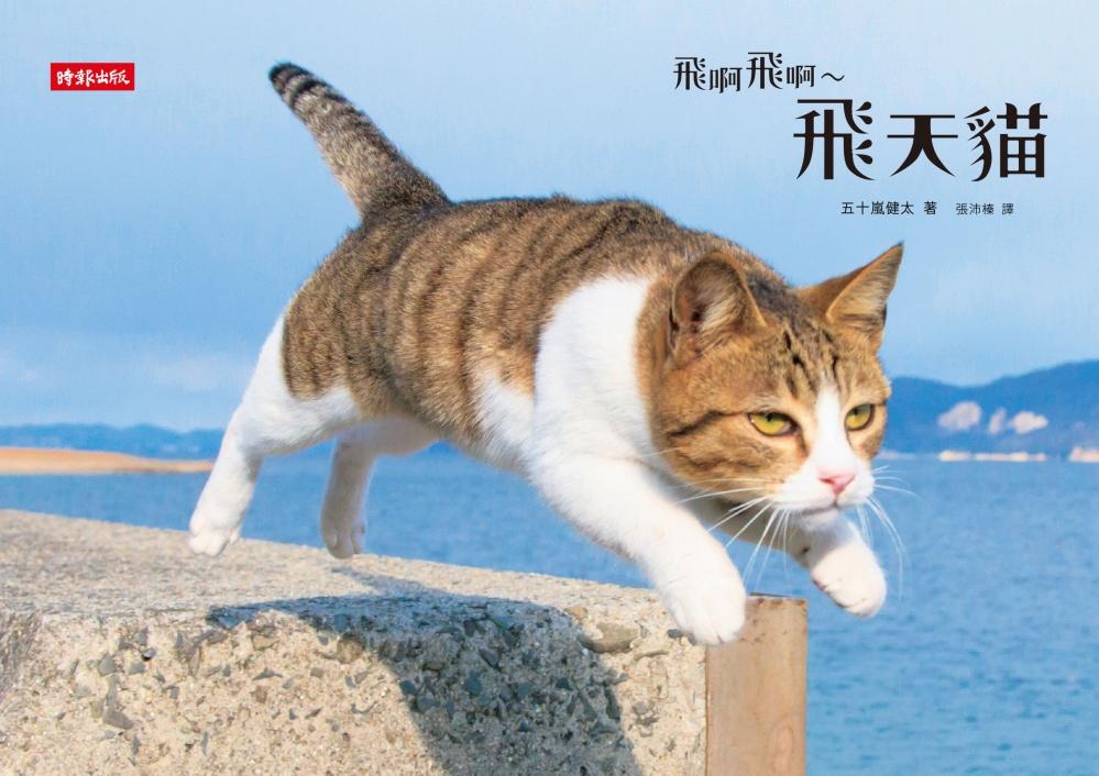 飛啊飛啊~飛天貓:2015最療癒的寫真書
