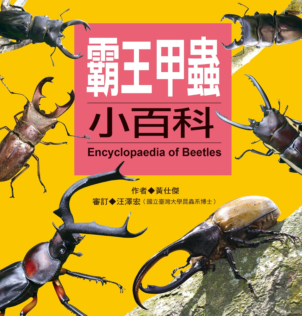 兒童百科:霸王甲蟲小百科(更新版)