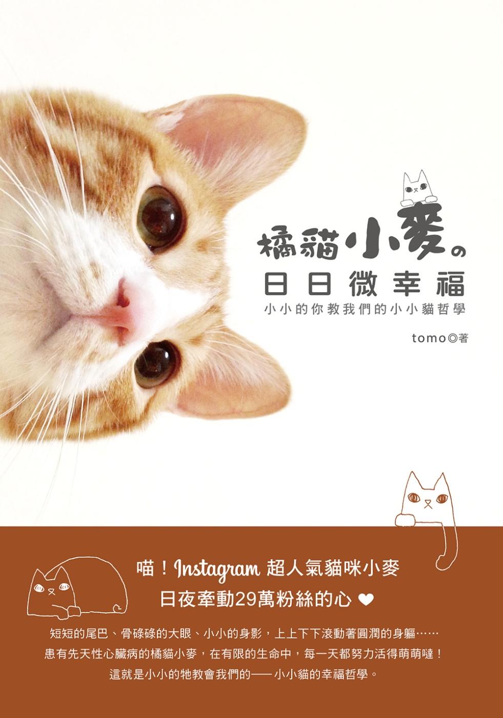 橘貓小麥的日日微幸福