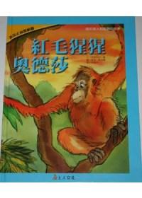 紅毛猩猩奧德莎